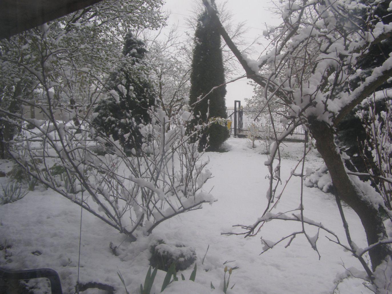 Krajobraz z Teodorowa koło Radomska (fot.Twoje Info/Monika)