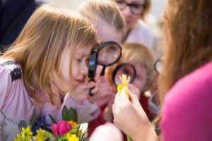 zapraszamy-na-naukowe-warsztaty-do-wilanowa-poswiecone-tulipanom-fot-marcin-mastykarz