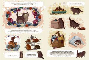 kot-homer-wyrusza-na-poszukiwanie-przyjaciela