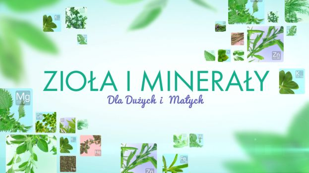 ziola-i-mineraly-dla-duzych-i-malych