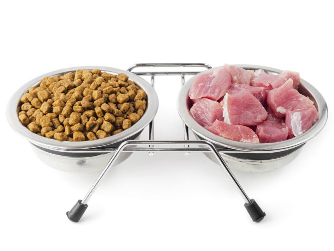 karma-gotowa-czy-domowa-kuchnia-fot-materialy-promocyjne