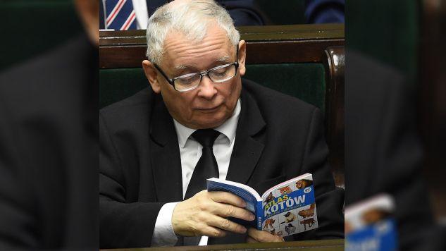 Prezes PiS Jarosław Kaczyński na sali sejmowej (fot. PAP/Radek Pietruszka)