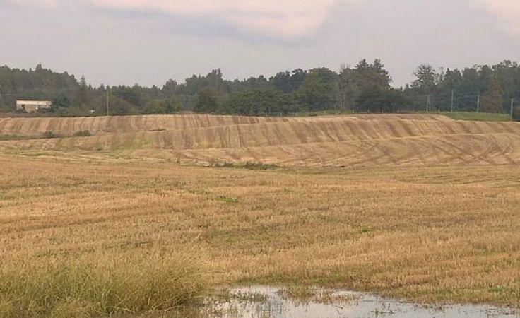 Pogoda nie sprzyja rolnikom. Niektóre pola stoją pod wodą