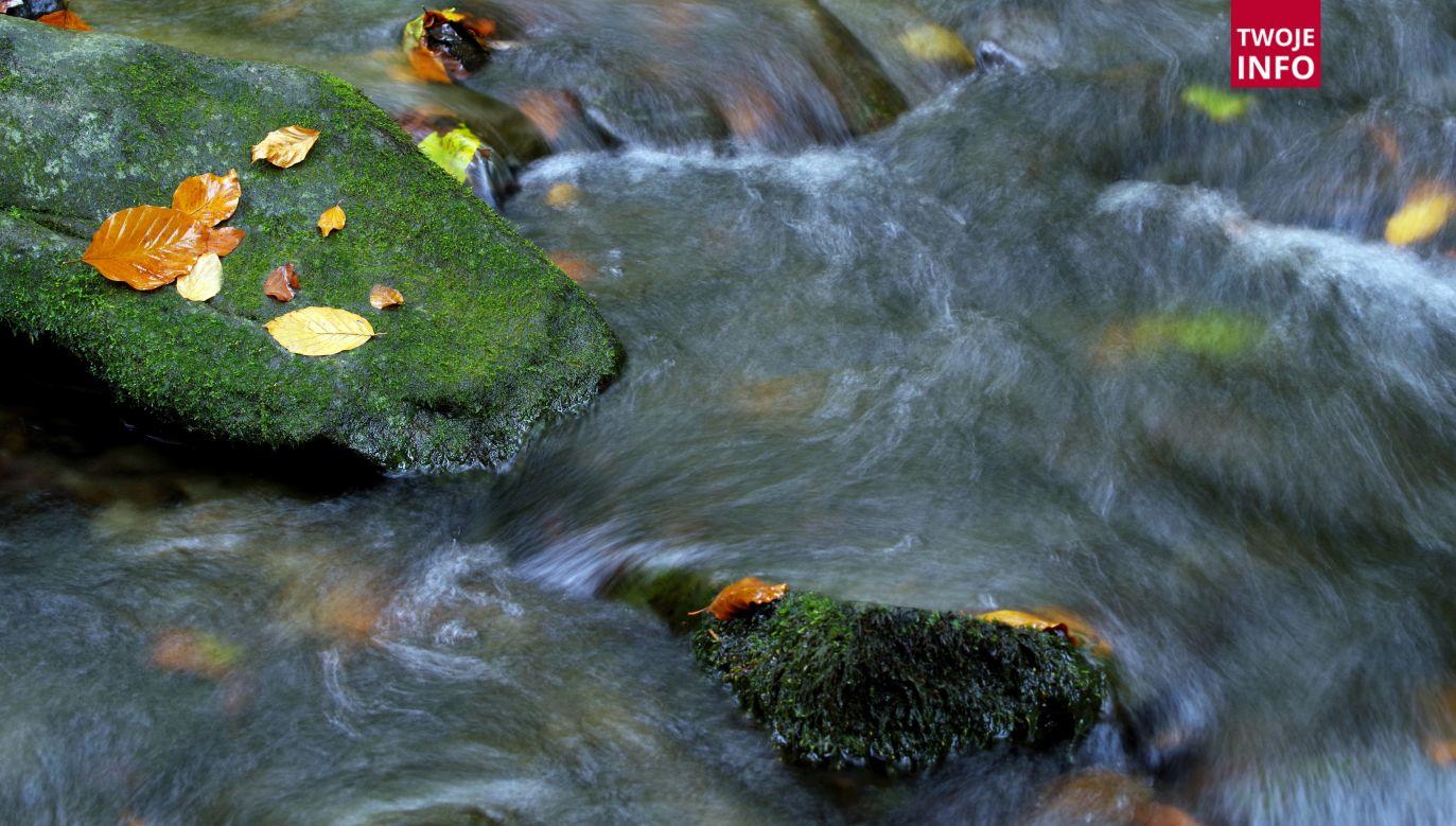 Ciało mężczyzny znajdowało się w potoku w miejscowości Bieździadka (fot. flickr.com/Babij)