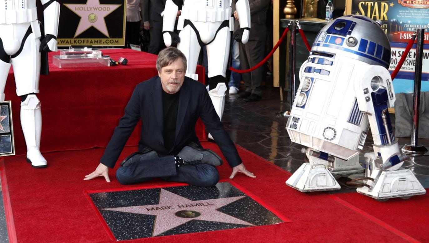 Mark Hamill podczas ceremonii odsłonięcia jego gwiazdy w Hollywood  (fot. PAP/EPA/MIKE NELSON)
