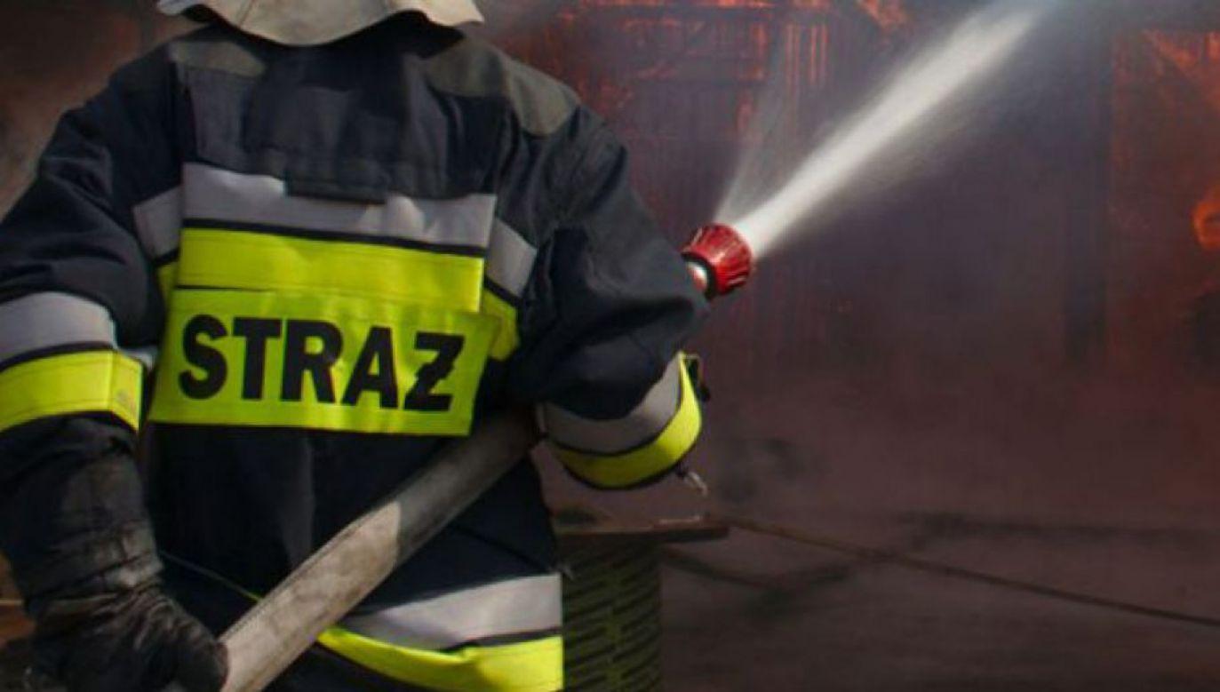 W mieszkaniu, w którym wybuchł pożar, znaleziono ciała trzech osób (fot. Wikipedia SQ9NIT)