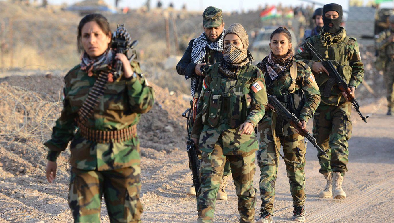 Oddziały Peszmergów w trakcie odbijania Mosulu z rąk Daesh (fot. arch. PAP/ABACA)