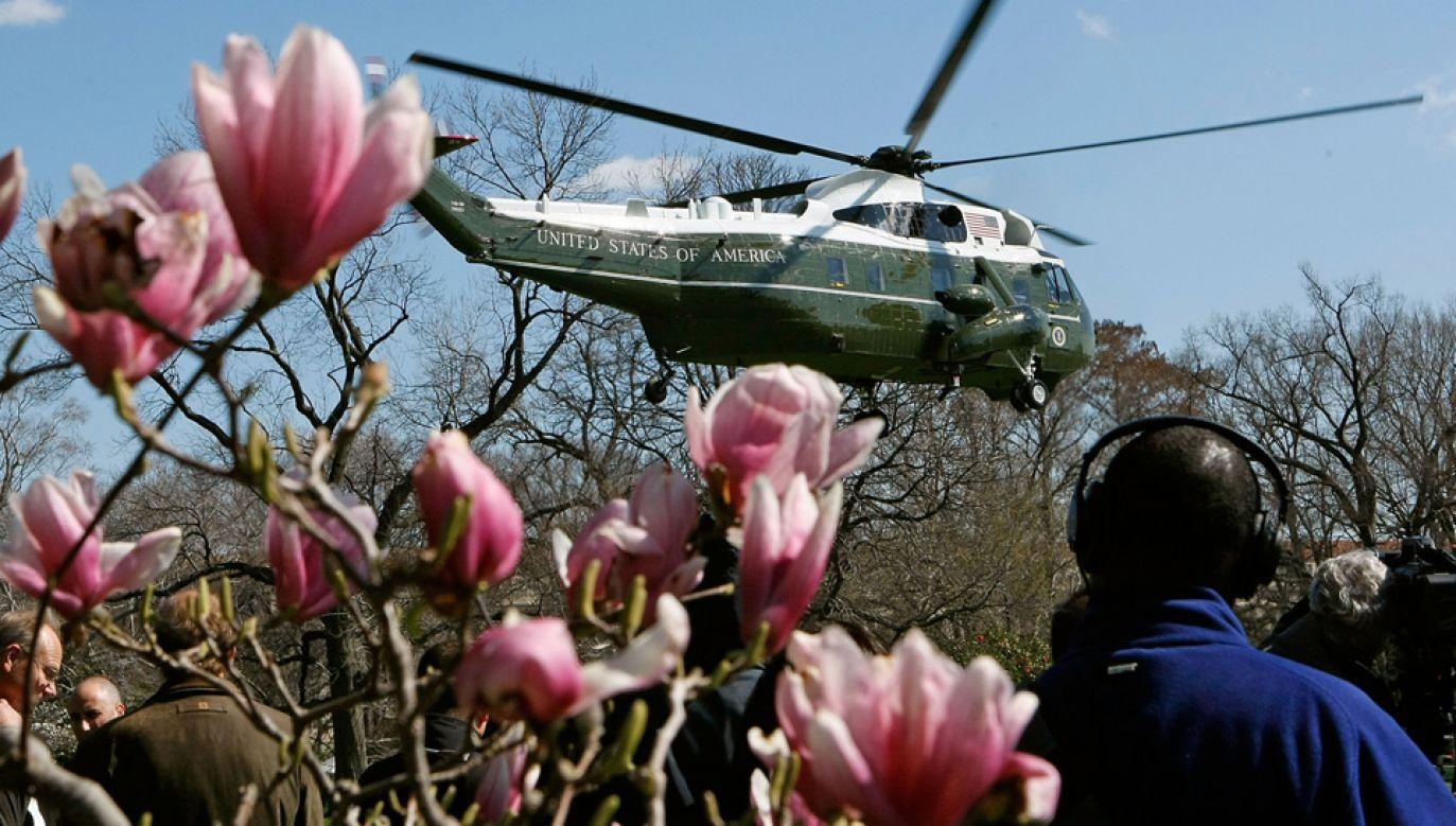 Magnolia trafila nawet na banknot 20-dolarowy (fot. Mark Wilson/Getty Images)