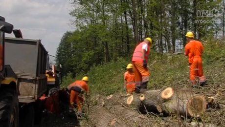 Rusza budowa 22 km DK 559 z Lipna do granic województw