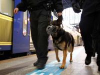 Nożownik ciężko ranił trzy kobiety w Norymberdze. Wciąż go szukają