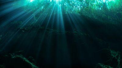 Ziemia. Podwodny świat cz. 8. Rajski Ogród i Dedalus