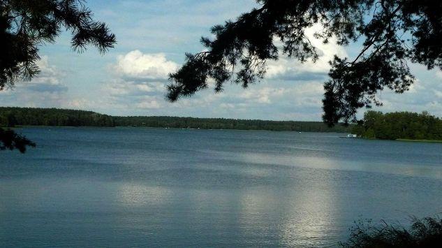 32-летний мужчина утонул в озере, пытаясь спасти собаку