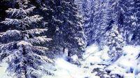 Ostatki zimowe – Dolina Białego, fot.Kazimierz Martyniak