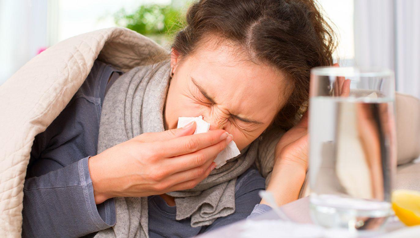Cztery osoby zmarły z powodu grypy (fot. Shutterstock/Subbotina Anna)
