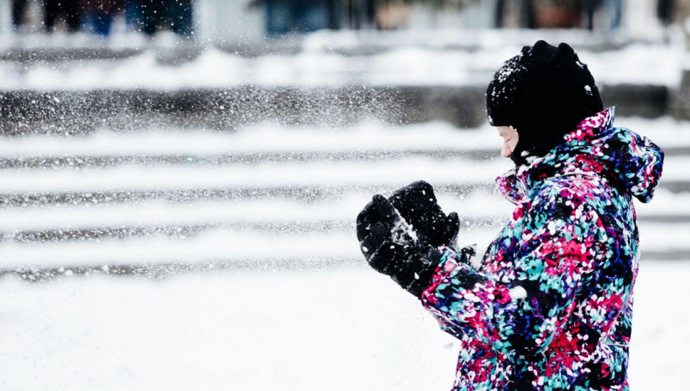 """""""Niebezpiecznie niskie temperatury"""" odnotowuje się w ośmiu stanach na Środkowym Zachodzie  (fot. PAP/EPA/ALBA VIGARAY)"""