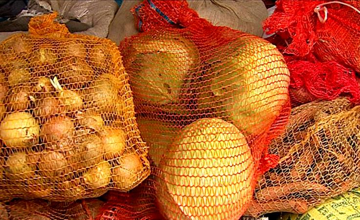 Ruszyła jesienna, albertyńska zbiórka ziemiopłodów