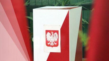 Wszystko o wyborach samorządowych 2014