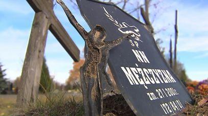 Cmentarze komunalne skrywają tajemnicę pochowanych jako NN (fot. TVP)