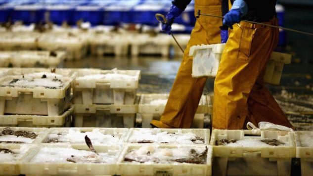 Urzędnicy mieli przymykać oko na nieprawidłowości w dużej firmie spożywczej (fot. Jeff J Mitchell/Getty Images)