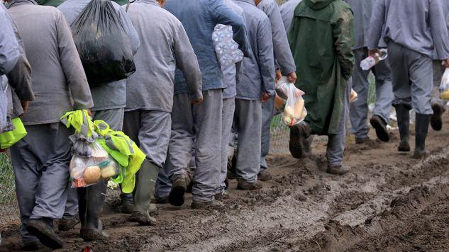 Program pracy dla więźniów zakłada m.in. zatrudnianie więźniów przez samorządy (fot. Christopher Furlong / Staff / Getty Images)