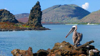 Tropem nieznanego – Nowe Galapagos
