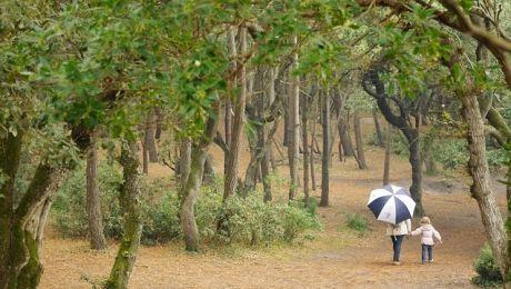 Czy w środę przydadzą się parasole? Sprawdź prognozę