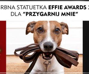 """Srebro na Effie dla kampanii """"Przygarnij mnie""""!"""