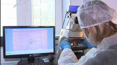 Zakład Biologii CLKP w trakcie badań nad próbkami DNA (fot. TVP)