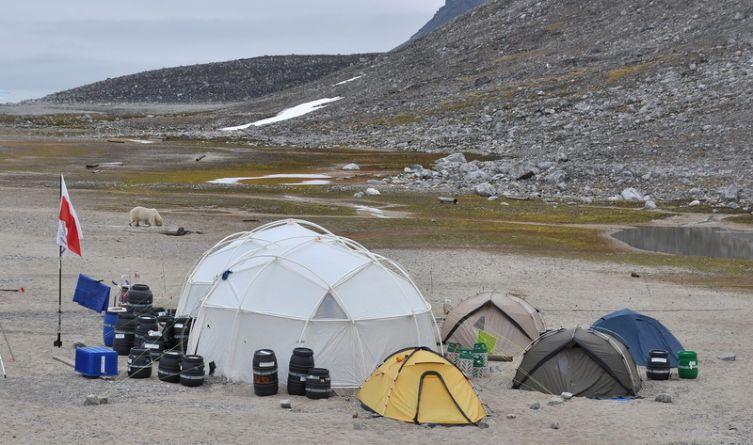 … albo pod namiotami (Magdalenfjorden), w bliskim sąsiedztwie niedźwiedzi polarnych… (Fot. M. Jakimiak)
