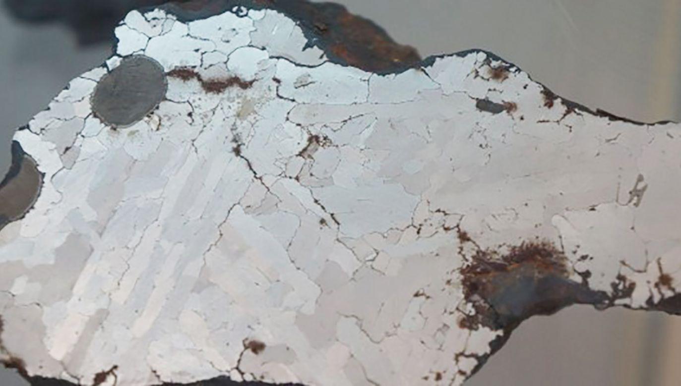 Największy w Polsce meteoryt można obejrzeć w Poznaniu (fot.  Muzeum Ziemi Uniwersytetu im. Adama Mickiewicza)