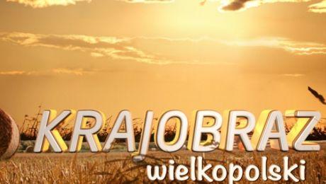 Krajobraz Wielkopolski
