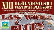 xiii-ogolnopolski-festiwal-bluesowy-las-woda-blues