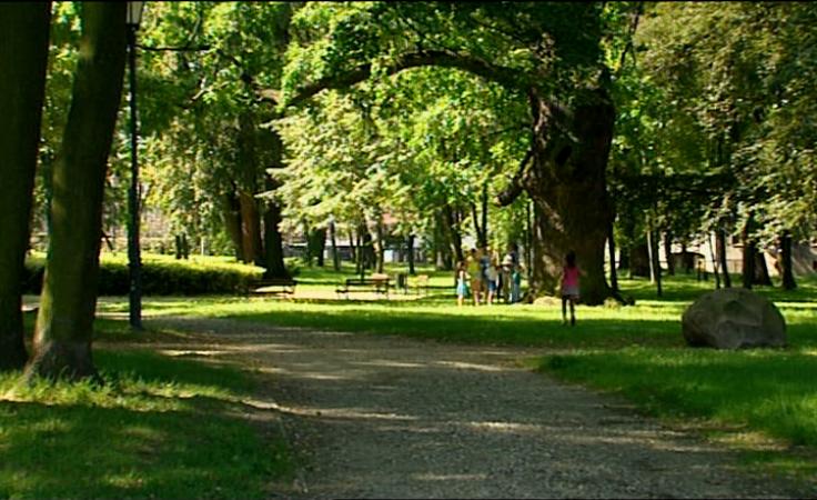 Jak ma wyglądać park? Decyzja należy do mieszkańców