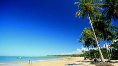 Natura w Jedynce – Brazylia. Historia naturalna. Rajskie wybrzeże