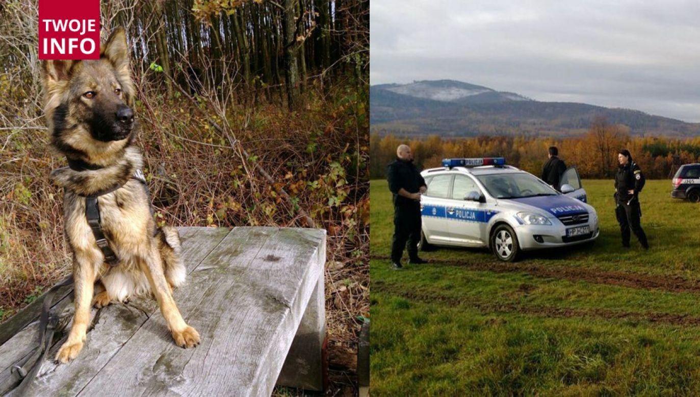 W ćwiczeniach brali również udział funkcjonariusze z Nysy, Krapkowic, Głubczyc oraz Brzegu (fot. opolska.policja.gov.pl)