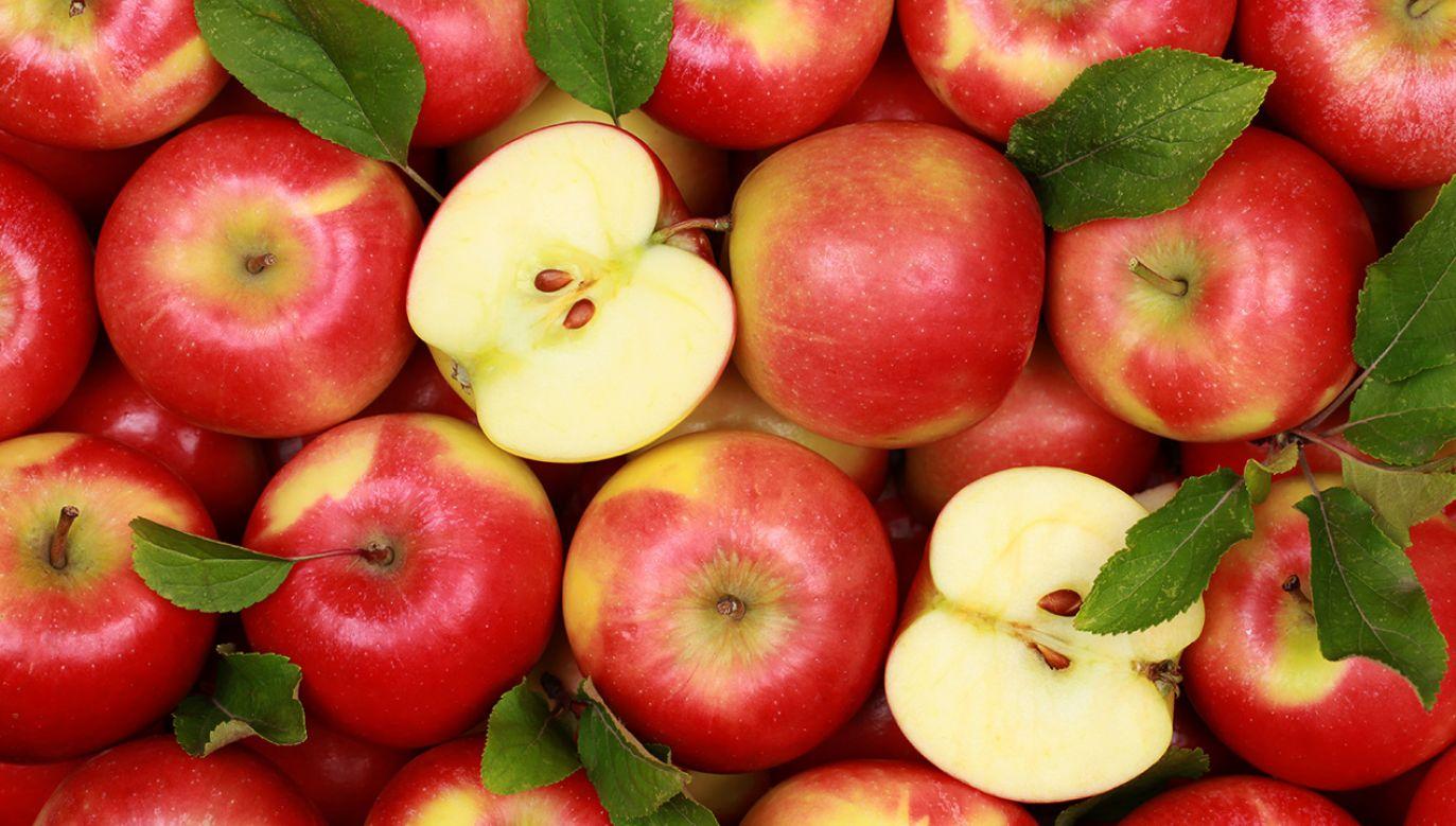 Tegoroczne zbiory jabłek są najniższe od lat (fot. Shutterstock/Markus Mainka)