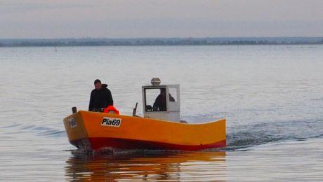 25 września Błękitny Patrol WWF przyjął od łowiącego na Zalewie Wiślanym rybaka z Piasków zgłoszenie o zaplątanej w jego sieci foce (fot. wwf.pl/Jan Wilkanowski)