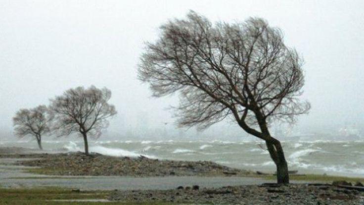 Na Warmii i Mazurach siła wiatru wyniesie od 30 do 50 km/h, w porywach do 90 km/h