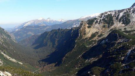 Na szczątki natknęli się 7 września pracownicy naukowi Tatrzańskiego Parku Narodowego, którzy badali drzewostan w Dolinie Roztoki, fot.wikipedia.org/ToSter