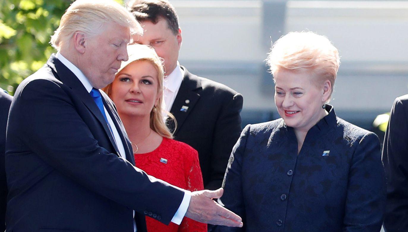 O wizycie poinformował urząd prezydenta Litwy (fot. REUTERS/Christian Hartmann)