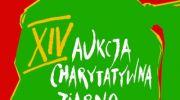 173-tys-zl-zebrano-na-xiv-aukcji-charytatywnej-w-muzeum-narodowym-w-warszawie