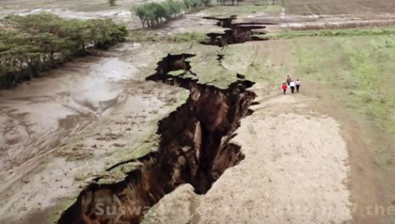 Geolodzy spekulują, czy to początek formowania się nowego kontynentu (fot. YouTube/DailyNation)