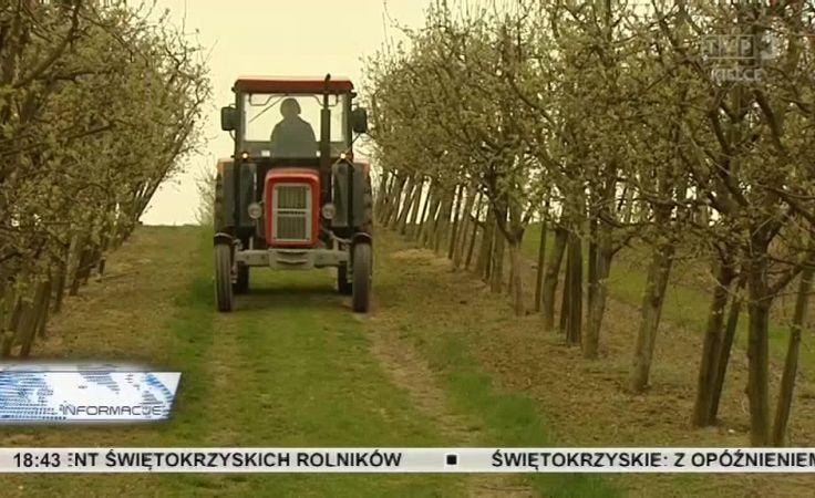 Udogodnienie dla rolników uprawiających małe gospodarstwa