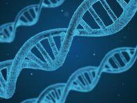 Chcą zbadać geny wszystkich Polaków. Żeby ostrzegać przed rakiem