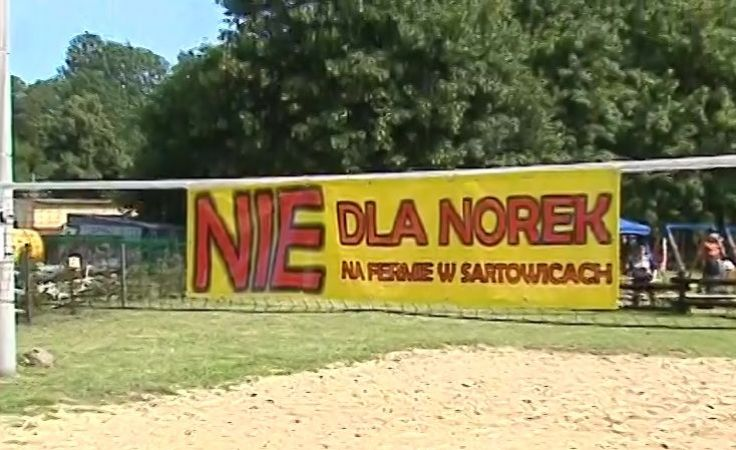 Mieszkańcy Sartowic nie chcą fermy norek pod nosem