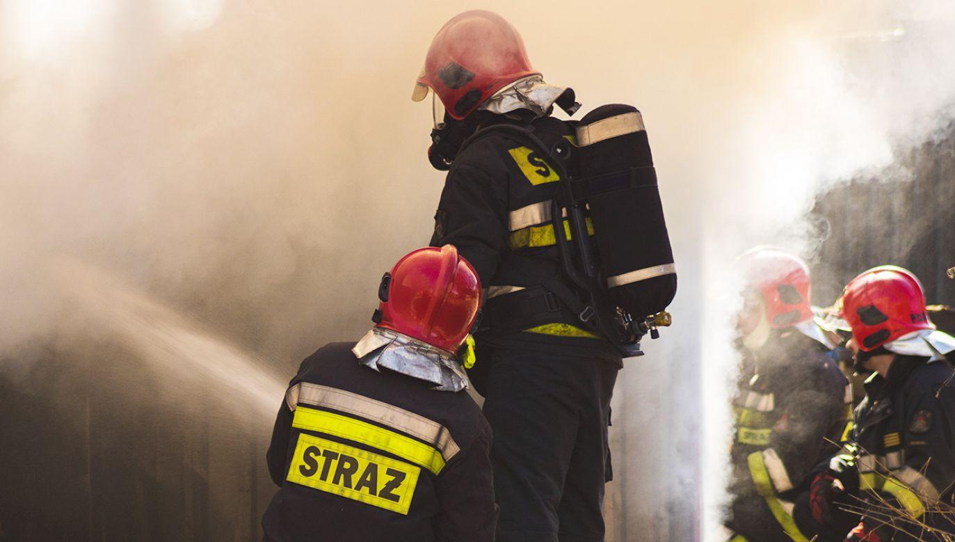 Z pożarem walczyło kilkanaście zastępów straży pożarnej (fot. Shutterstock/Mike Mareen)