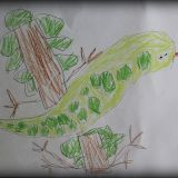 Praca Filipa Brajczewskiego, 5 lat