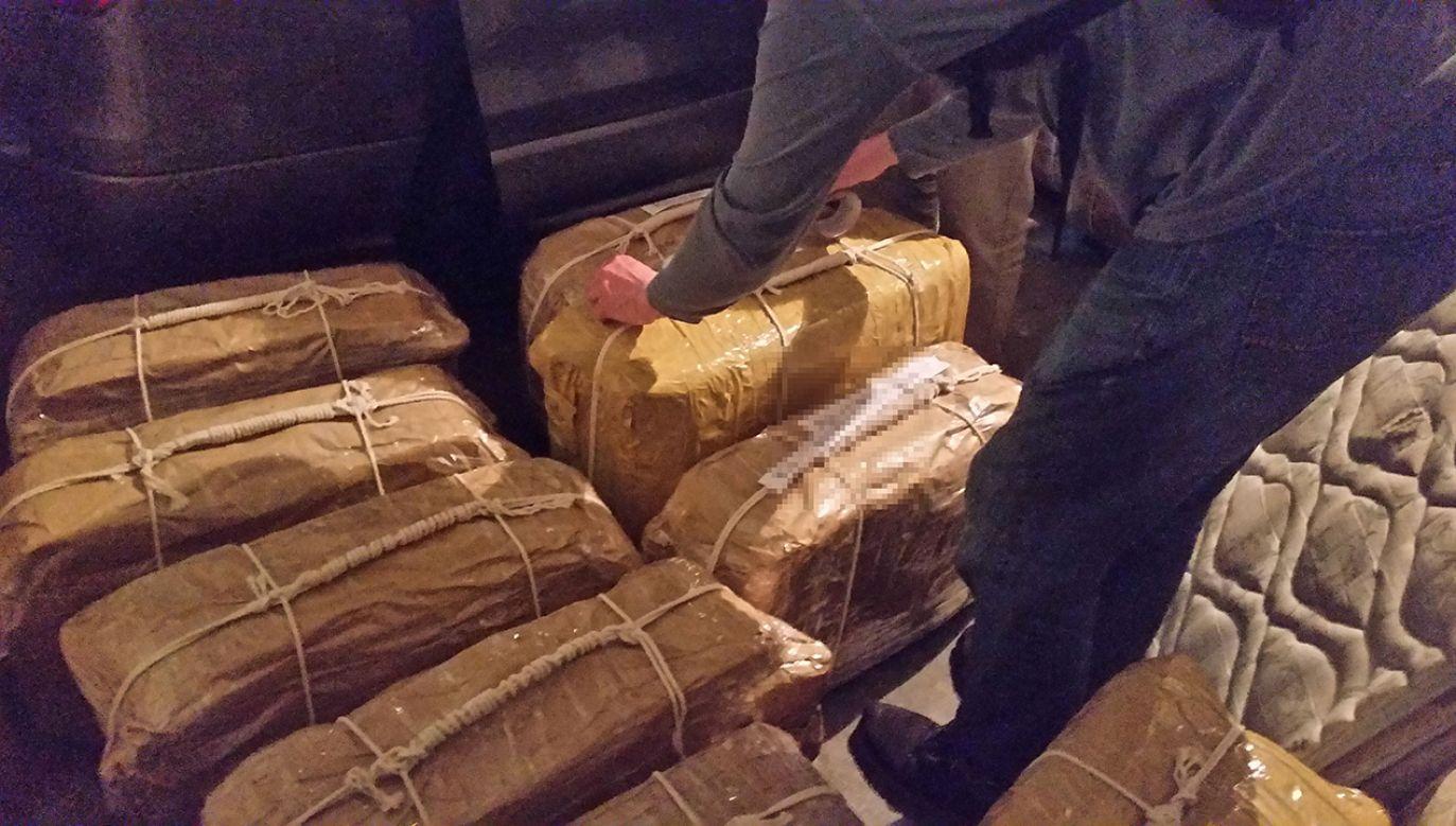 Około 400 kg kokainy odkryto ponad rok temu na terenie rosyjskiej ambasady w Argentynie (fot. Argentine Ministry of Security/Handout via REUTERS)
