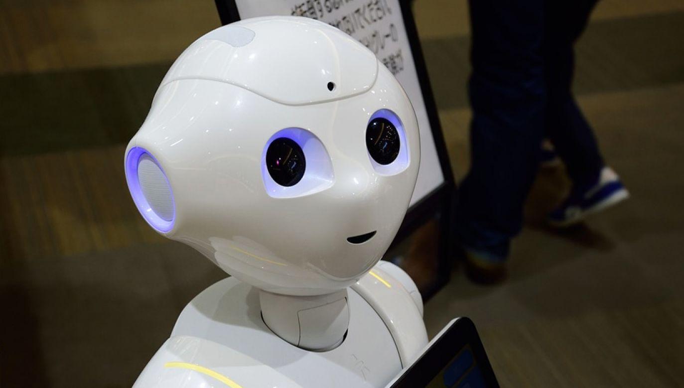 Japonia przoduje w robotyzacji życia (fot. Pixabay)