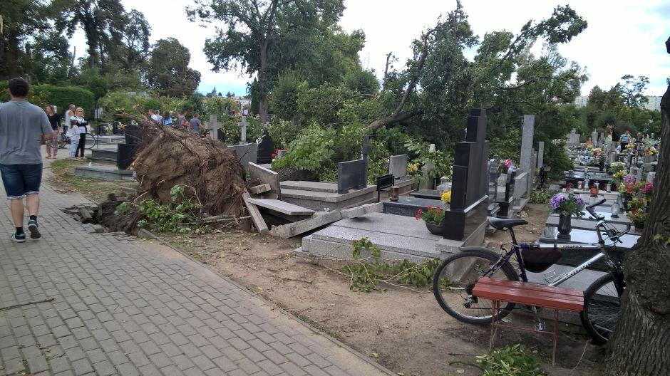 Zniszczony cmentarz w Gnieźnie (fot.Twoje Info/Michał)